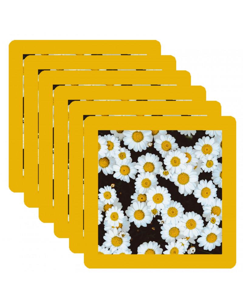 Simple 10x10 cm en pack de 6 bords ronds